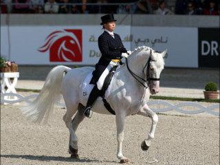 Александра корелова фото www equestrian ru